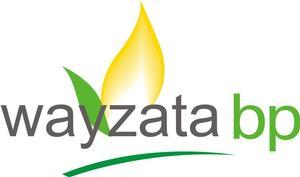 Wayzata BP